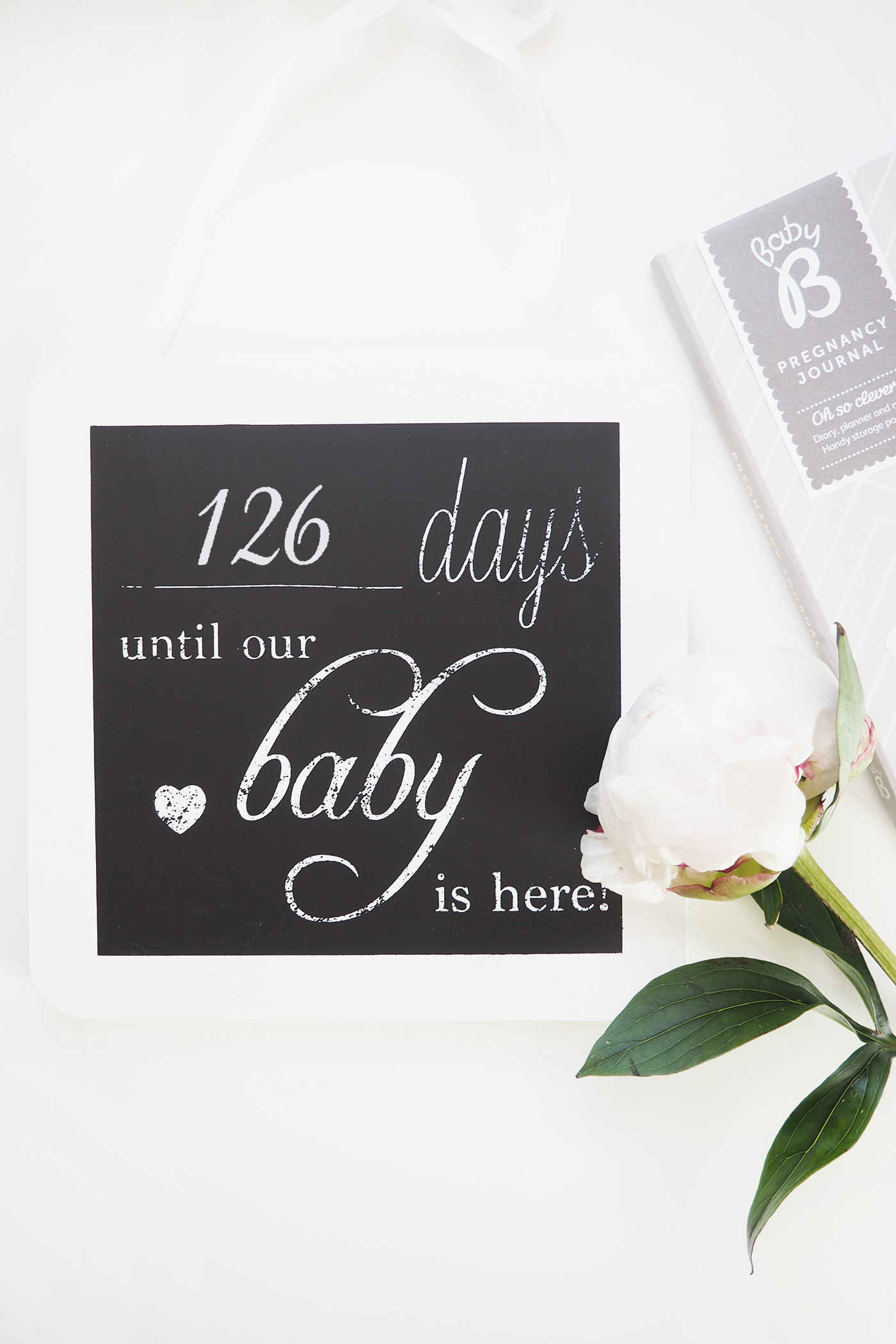 Week 22 Pregnancy Update | Pram Shopping and Morning Sickness